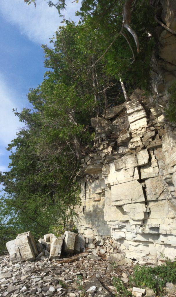 Niagara Escarpment at The Clearing 2